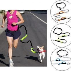 Dog Leash For Running with Retractable Hand Free Stunning Pets