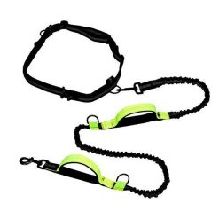 Dog Leash For Running with Retractable Hand Free Stunning Pets Green as picture