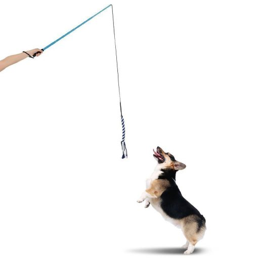 Dog Training Rope Toy Stunning Pets