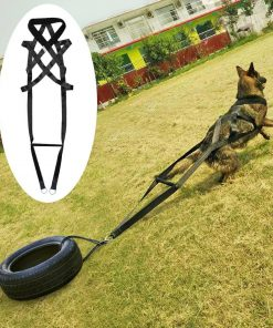 ELITE Tactical Dog Training Strap Military Trainer Glamorous Dogs