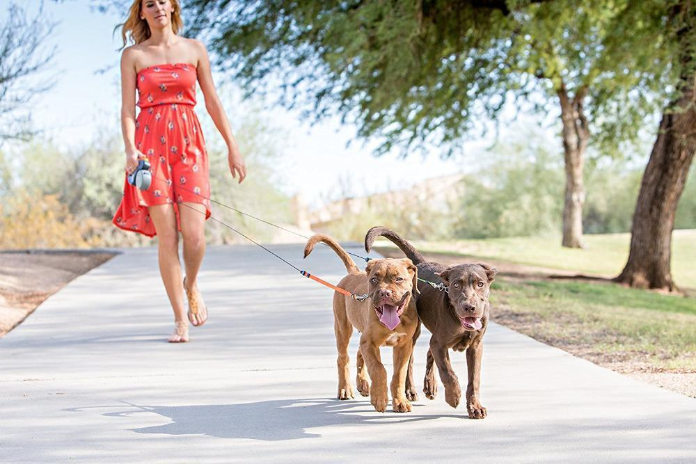Enjoy Walks with the Non-Tangling Retractable Leash For 2 Dogs Stunning Pets