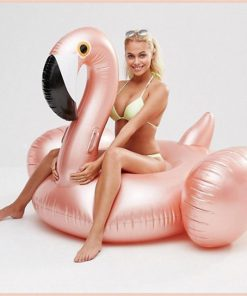 Giant Inflatable Float Ride-on! Stunning Pets