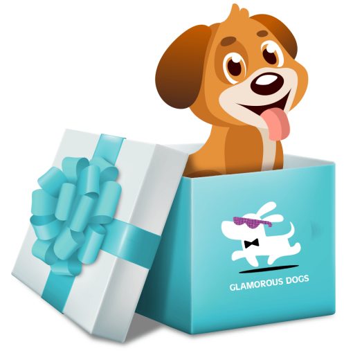 Gift Card Gift Card Glamorous Dogs Shop - Glamorous Accessories for Your Dog + FREE SHIPPING
