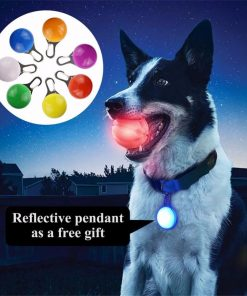 Glow Ball for all dogs with free LED Reflective Pendant Fun Stunning Pets