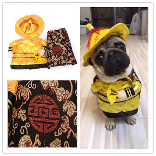 Golden King Empire Suit for Pets Stunning Pets