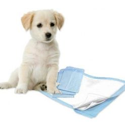 Highly Absorbent, Odor Controlling Pee Pads For Dogs | Free Shipping July Test Stunning Pets