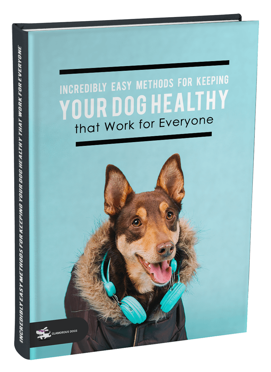 Incredibly Easy Methods for Keeping Your Dog Healthy that Work for Everyone Glamorous Dogs Shop - Glamorous Accessories for Your Dog + FREE SHIPPING