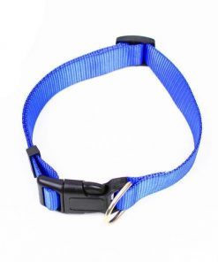 Instant Dog Leash Trainer Stunning Pets
