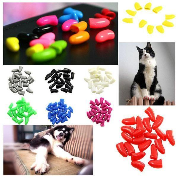 Keep Your Pet Nails Protected with the Colorful Pet Nail Caps Stunning Pets