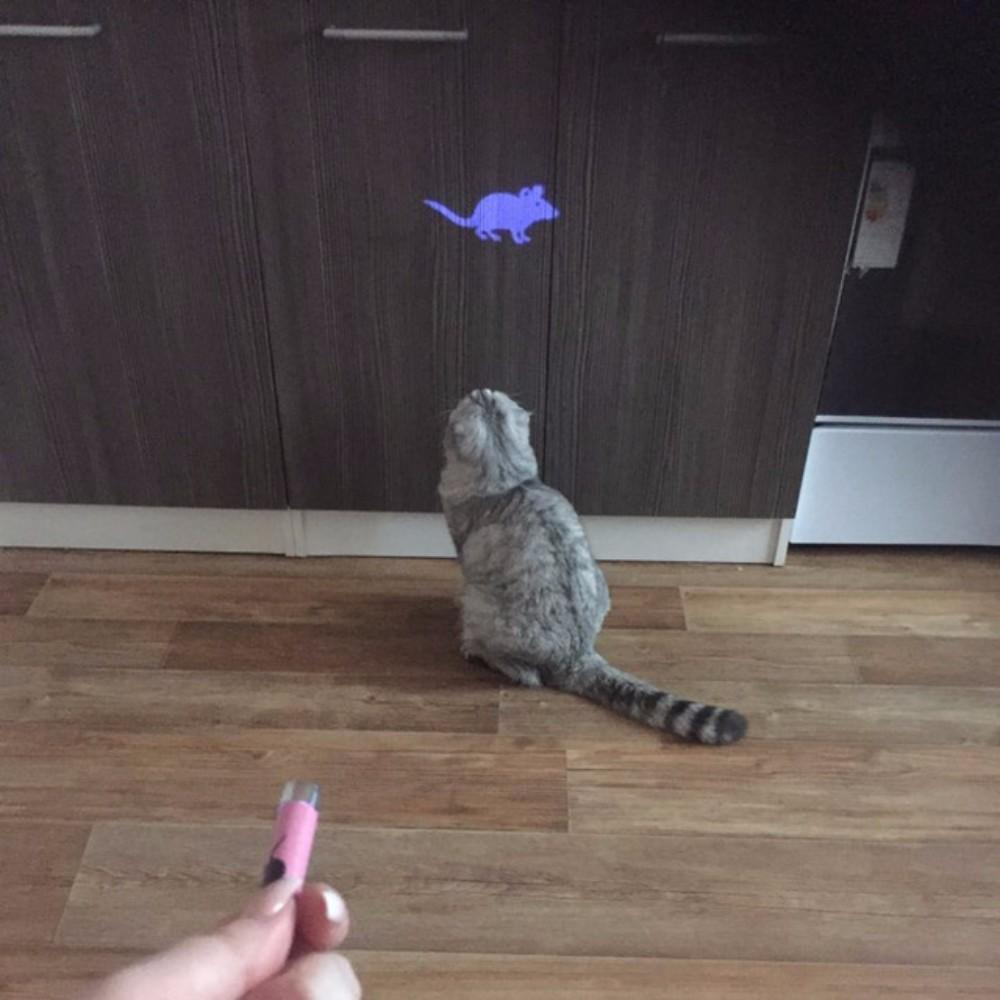 Mouse Laser Pointer For Cats Fun Stunning Pets