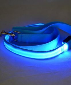 multi color dog led leash Stunning Pets Blue 25mm
