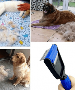 Multipurpose Pet Hair Brush Stunning Pets