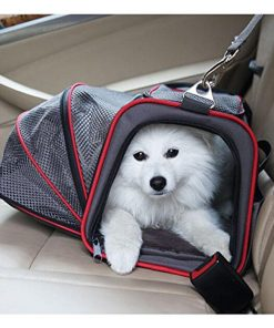 PETCARRYON™: Pet Carrier Bag for Getting Your Pet Everywhere With You High Ticket GlamorousDogs