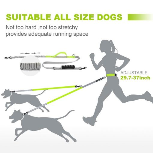 Best Elastic Double Leash For Dogs - Super Useful For Running 13
