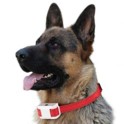 Rechargeable Dog Collar