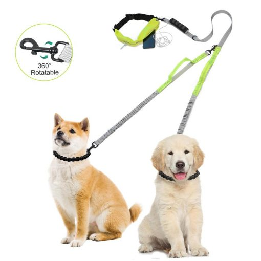 Best Elastic Double Leash For Dogs - Super Useful For Running 4