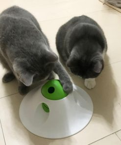 Cat Interactive Treat Dispenser