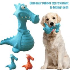 Dog Ate Rubber Toy