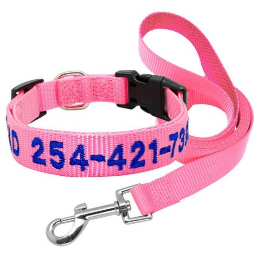2020 Best High Quality Nylon Easy Adjustable Dog Collar & Leash 4