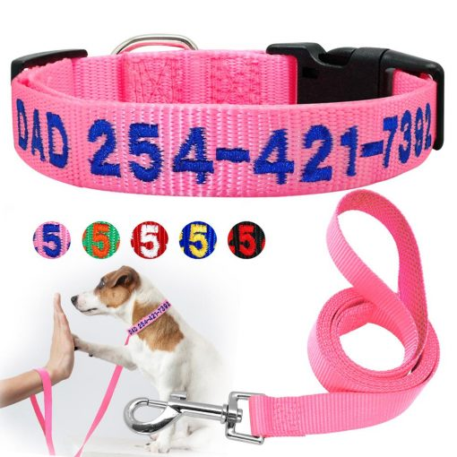 2020 Best High Quality Nylon Easy Adjustable Dog Collar & Leash 1