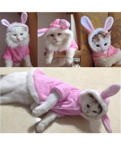 Rabbit Costume for Cats and Small Dogs Stunning Pets