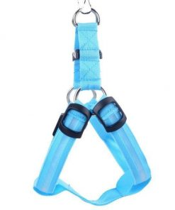 Reflective Night Safety LED Vest to Keep You and Your Dog Safe Stunning Pets Blue L