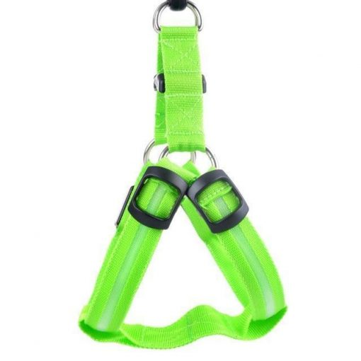 Reflective Night Safety LED Vest to Keep You and Your Dog Safe Stunning Pets Green L