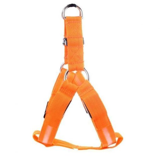 Reflective Night Safety LED Vest to Keep You and Your Dog Safe Stunning Pets Orange L
