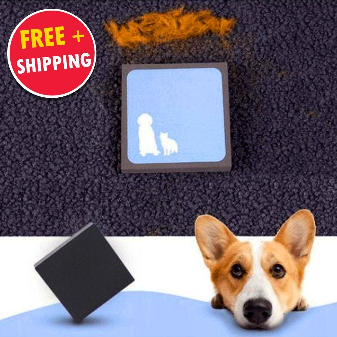 Reusable Pet Hair Cleaner   Remove Pet Hair Instantly! ???? FREE ???? Fur Remover Pawing Store