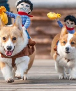Ride Em' Cowboy Dog Costume Stunning Pets