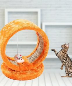 Round Frame Cat Climbing Toy Stunning Pets