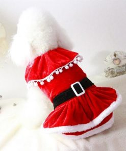 Santa Christmas Dress for Puppies Stunning Pets Red L
