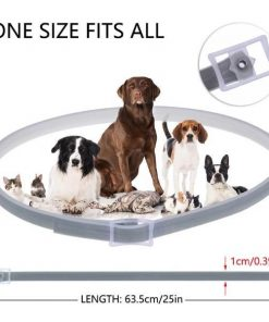 Shield Pet Pro Collar | Kill Ticks and Fleas | ???? FREE ???? Tick Remover collar Hapee House store