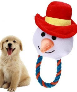 Snowman Chewing Toy Stunning Pets