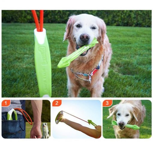 Spring Fun Pull and Shoot Toy Kit Stunning Pets Green M