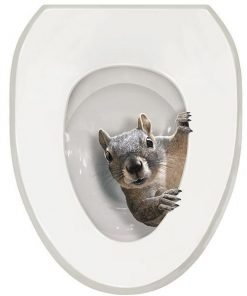 Squirrel Toilet Seat Decal Sticker Stunning Pets