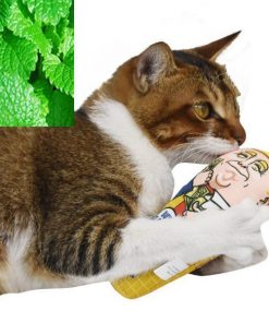 Stimulating Ice Cream Trump Catnip Toy For Cats Stunning Pets