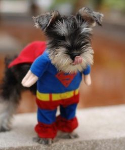 Superhero 'Super Man' Outfit for Small Dogs Stunning Pets
