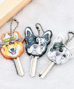 The Amazing Key Cover Stunning Pets
