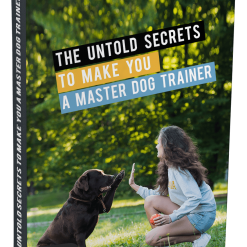 The Untold Secrets to Make you a Master Dog Trainer Glamorous Dogs Shop - Glamorous Accessories for Your Dog + FREE SHIPPING