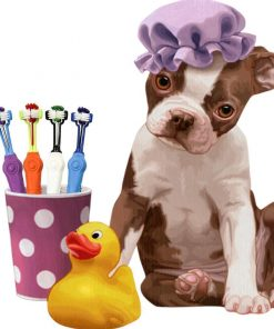 Three Sided Pet Toothbrush | The Best in Market Dog Lovers ROI test GlamorousDogs