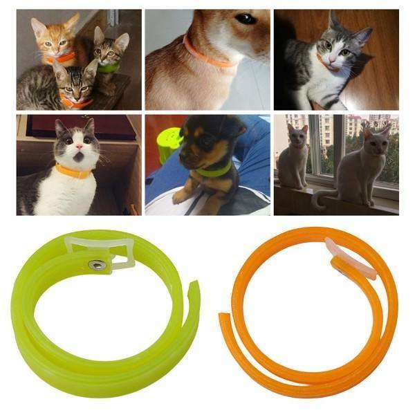 Tick & Flea Collar for Dogs   Free Shipping to be Quality Premium Product. Stunning Pets