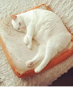 Toast Bread Shape Pet Bed Stunning Pets