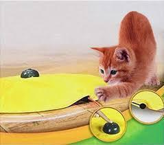 Undercover Moving Mouse Cat Toy Stunning Pets