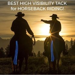 USB Rechargeable Adjustable LED Horse Tail Lights LED Tail GlamorousDogs