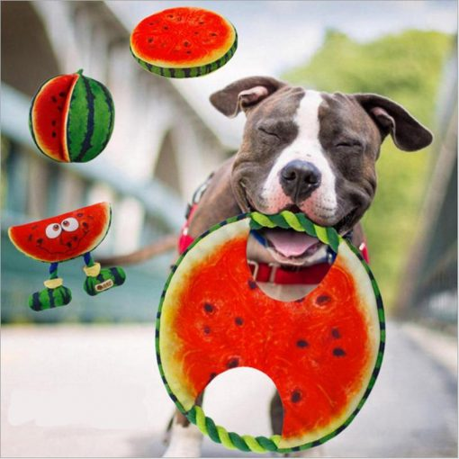 Watermelon & Banana Dog Toys | Best Chewing Dog Toys GlamorousDogs
