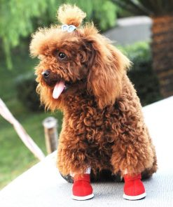 Xmas Santa Claus Boots For Dogs Dog boots GlamorousDogs