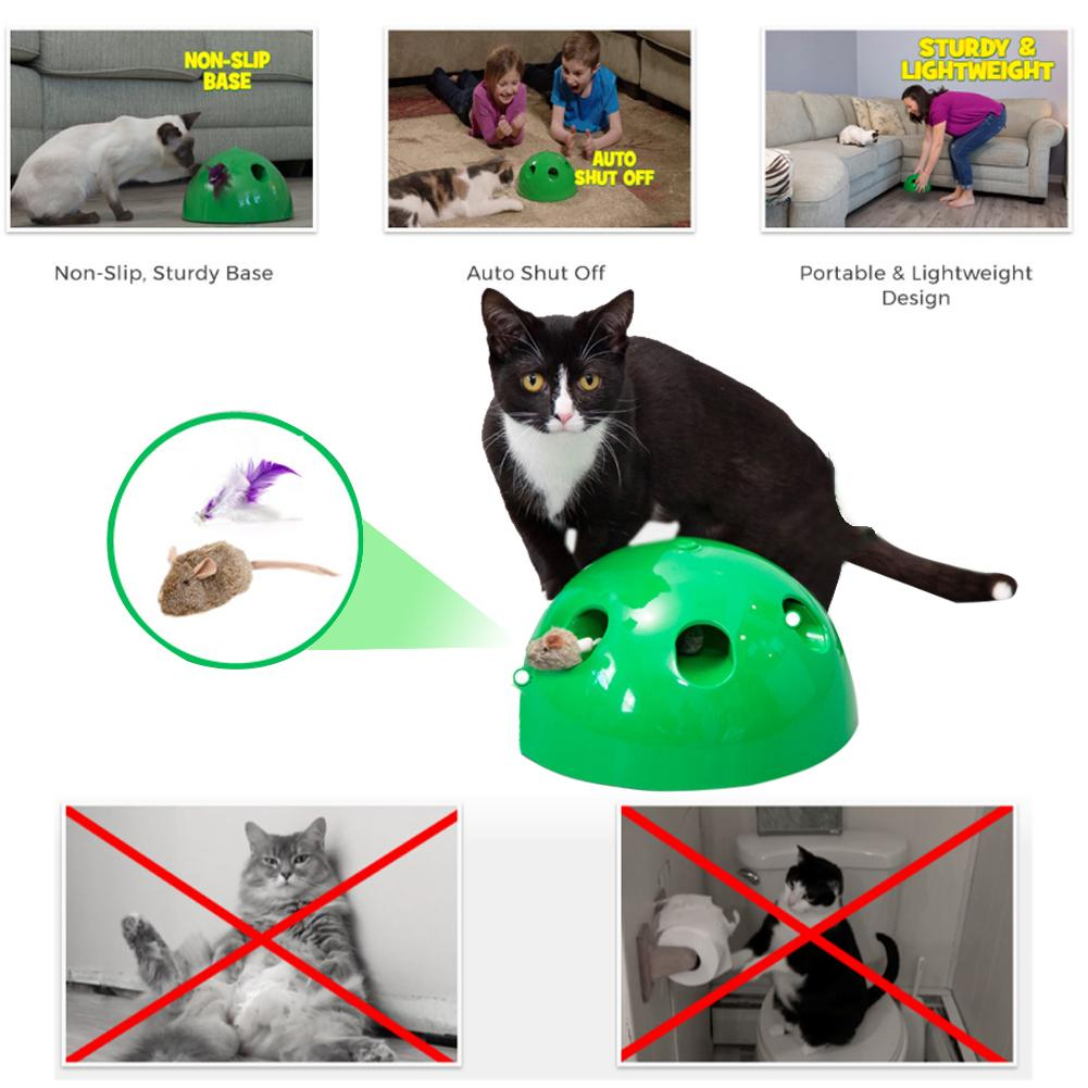 2020 Premium Interactive Cat Toys (Peek-A-Boo cat toy) 1